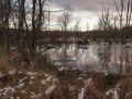 Lac créé par les castors