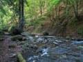 Ruisseau de Cliergue
