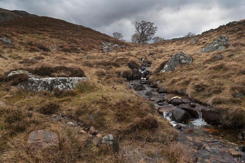 Ruisseau dans la lande