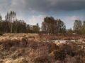 Lande le long de la route entre le Loch Ness et Fort Augustus
