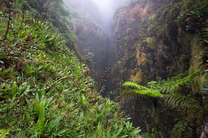 Grande Faille appelée aussi La Fente Nord. Des nappes de gaz carbonique peuvent y stagner ce qui rend son accès dangereux. Cette faille est bien antérieure au volcan.