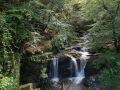 Torrent et cascade dans le parc national de Killarney.
