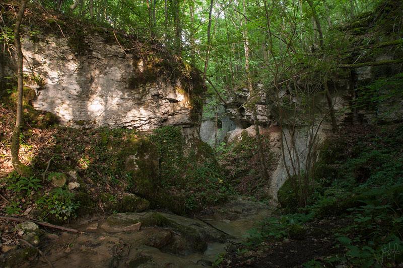 Falaise au fond des gorges de la Vingeanne